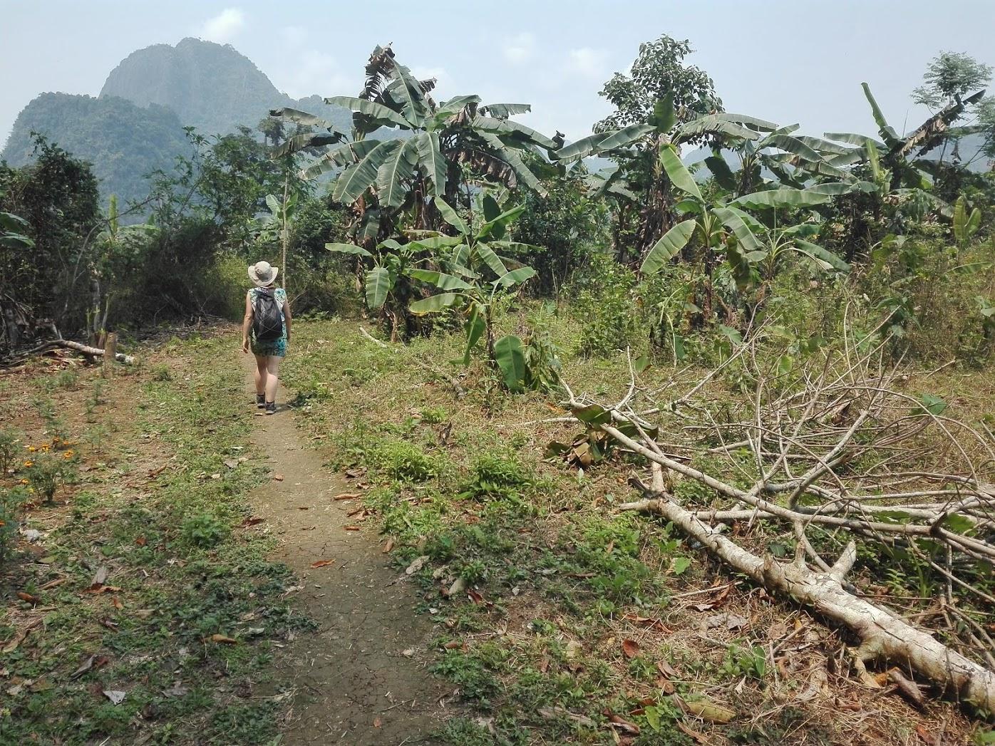 w stronę dżungli. Laos