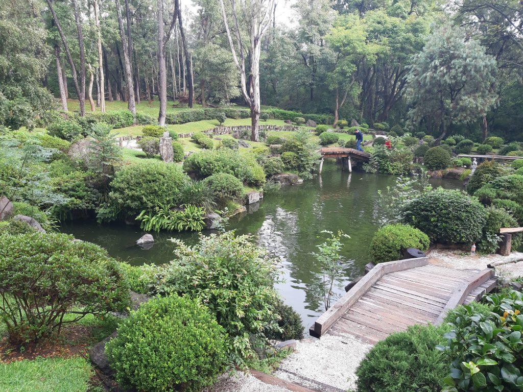 Bosque Colomos, Zapopan, Guadalajara, Meksyk - ogród japoński