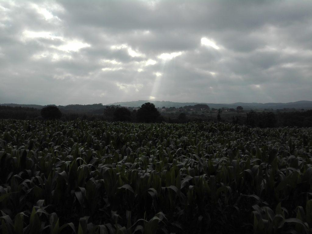 niebo camino del norte camino de santiago hiszpania